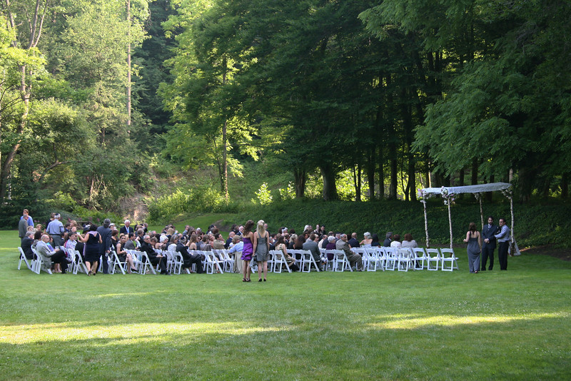 Weddings and a Party